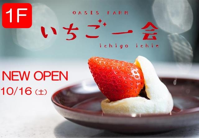 10月16日 NEW OPEN【ミッテン1F/いちご一会】